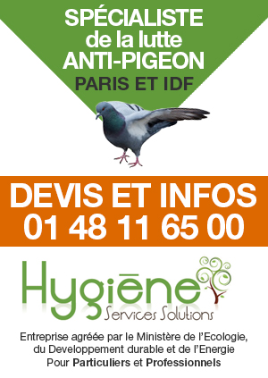 hygiene-services-solutions